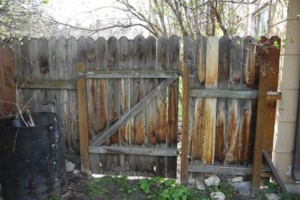 Photo #9: King of Stain - Fence / Deck Staining