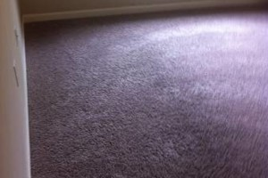 Photo #1: CARPET CLEANING. 2 ROOMS JUST $40!!!
