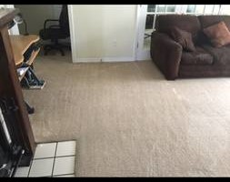 Photo #4: DOCTOR CLEAN CARPET AND TILE CARE