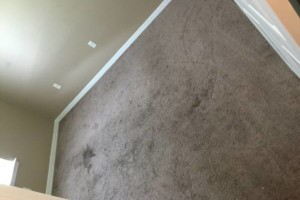 Photo #2: DOCTOR CLEAN CARPET AND TILE CARE