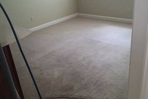 Photo #3: EnviroTech Services LLC. Carpet Cleaning 4 Areas $99.00