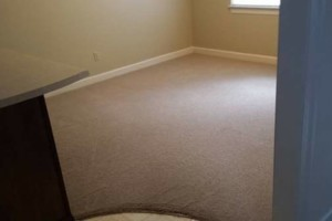 Photo #1: EnviroTech Services LLC. Carpet Cleaning 4 Areas $99.00