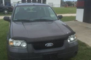 Photo #1: Transportation with a smile (Ford Escape)