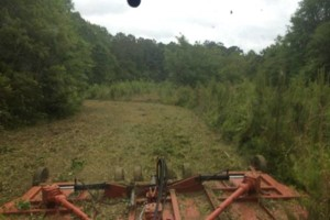 Photo #6: MapTractorWorks. Excavator Services/Underbrushing/Dirt Work/Bushogging
