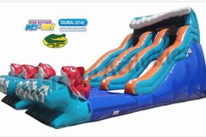 Photo #11: Inflatable Party Rentals