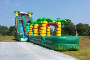 Photo #7: Inflatable Party Rentals