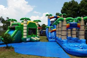 Photo #6: Inflatable Party Rentals