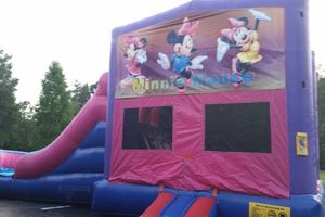 Photo #4: Inflatable Party Rentals