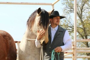 Photo #1: Durfee Quarter Horses. Horse training/ natural horsemanship