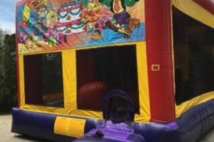 Photo #3: PARTY TENTS - BOUNCEY CASTLES - MECHANICAL BULL & MORE!