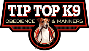 Photo #1: Tip Top K9 Tulsa Dog Training