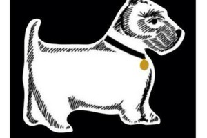 Photo #1: Paws To Pavement - Dog Walking
