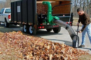 Photo #1: LEAF REMOVAL & LAWN MAINTENANCE