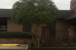 Photo #2: Guitreau's lawn care