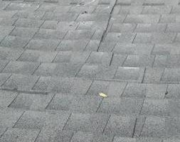 Photo #1: Roofing Work by Jimmy