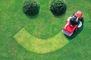 Photo #1: Soileau's Lawn Service