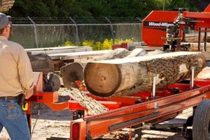 Photo #8: Portable Sawmill Services