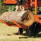 Photo #7: Portable Sawmill Services