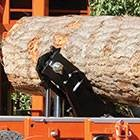 Photo #6: Portable Sawmill Services