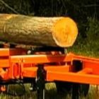 Photo #4: Portable Sawmill Services