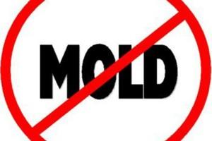 Photo #1: Cajun construction LLC - mold prevention