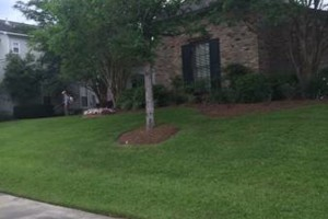 Photo #5: TWO BROTHERS LAWN AND LANDSCAPE, LLC