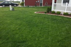 Photo #1: Deep Creek Services Landscaping