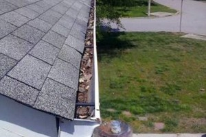 Photo #14: Gutter Clean-Out/ Debris Removal