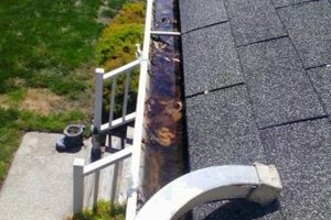 Photo #13: Gutter Clean-Out/ Debris Removal