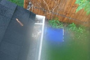 Photo #11: Gutter Clean-Out/ Debris Removal