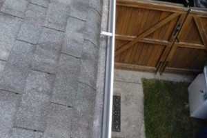 Photo #9: Gutter Clean-Out/ Debris Removal