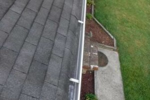 Photo #8: Gutter Clean-Out/ Debris Removal