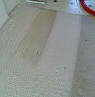 Photo #1: Carpet Cleaning Special!