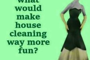 Photo #1: Do you need your home cleaned?