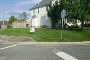 Photo #2: Best Priced Quality Pro Lawn Care