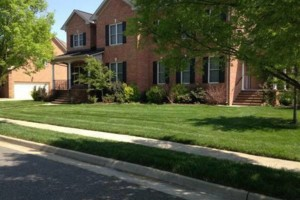 Photo #1: Best Priced Quality Pro Lawn Care