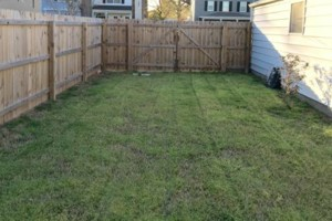 Photo #2: Kempton's Lawn Care