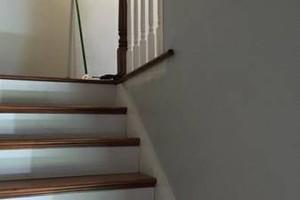 Photo #15: Finish Carpenter and Door Installer