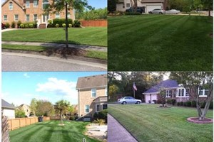 Photo #3: Tidewater Landscape Corporation