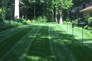 Photo #1: Aeration and seeding services