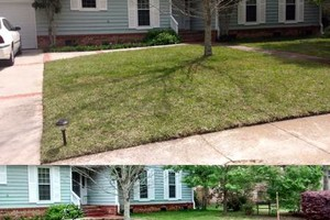 Photo #4: Landscape Overhaul / Design - Yard Barber SC, LLC