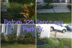 Photo #5: 4x4 landscaping & pressure washing