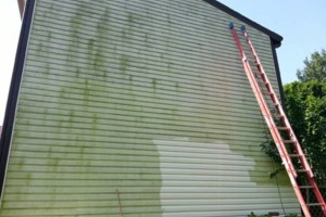 Photo #1: 4x4 landscaping & pressure washing