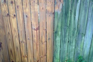 Photo #7: PRESSURE WASHING (from $75)