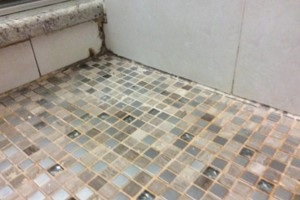 Photo #6: Grout cleaning service