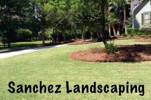 Photo #16: Sanchez LAWN CARE SERVICE