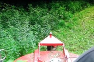 Photo #1: Rab's Tractor Work, Bush Hogging, etc...