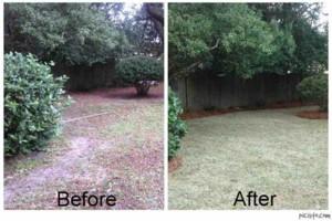 Photo #3: C & A Lawn Care - Leaf Cleanup, Mulch, Topsoil