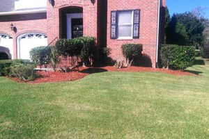 Photo #5: Morales Landscaping