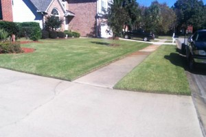 Photo #3: Morales Landscaping